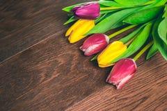 Bakgrund för marsch för dagen för kvinna` s 8 med våren blommar Arkivbild