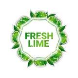 Bakgrund för modell för färgrikt för cirkel för limefruktfrukt utrymme för kopia organisk over vit royaltyfri illustrationer
