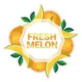 Bakgrund för modell för färgrikt för cirkel för melonfrukt utrymme för kopia organisk over vit vektor illustrationer