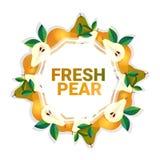 Bakgrund för modell för färgrikt för cirkel för päronfrukt utrymme för kopia organisk over vit royaltyfri illustrationer