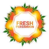 Bakgrund för modell för färgrikt för cirkel för persimonfrukt utrymme för kopia organisk over vit stock illustrationer