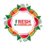 Bakgrund för modell för färgrikt för cirkel för vattenmelonfrukt utrymme för kopia organisk over vit vektor illustrationer