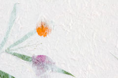Bakgrund för mullbärsträdpapperstextur Royaltyfria Foton