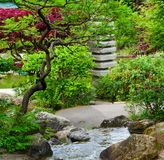 bakgrund för närbild för trädgård för vattenfallstenjapan royaltyfria bilder