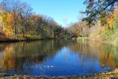 Bakgrund för naturlandskapsjö Royaltyfri Bild