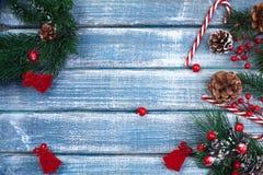Bakgrund för nytt år med bär och med julkottar Fotografering för Bildbyråer