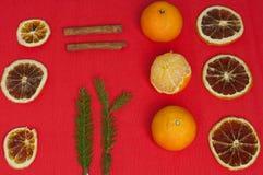 Bakgrund för nytt år med mandariner och kanelbruna apelsiner Fotografering för Bildbyråer