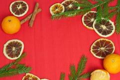 Bakgrund för nytt år med mandariner och kanelbruna apelsiner Royaltyfria Bilder