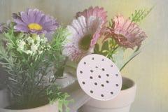 Bakgrund för pastellfärgade färger för tappning blom- Arkivfoton