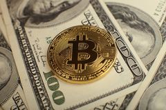 Bakgrund för pengar och för dollar Bitcoin för guld- mynt ny faktisk Cryptocurrency Affärs- och handelbegrepp Arkivfoto
