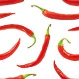Bakgrund för peppar för röd chili sömlös Fotografering för Bildbyråer