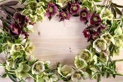 Bakgrund för ram för dag för mödrar för feriebröllopfödelsedag Tappningvårblommor av lenten steg Royaltyfri Fotografi