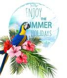Bakgrund för sommarferier med tropiska blommor med den färgrika tropiska papegojan och tukan BokstäverHello sommar Arkivfoto