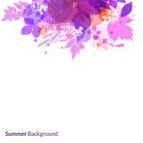 Bakgrund för sommarlövverkvektor Arkivfoto