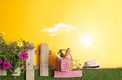 Bakgrund för sommarträdgårdpicknick Fotografering för Bildbyråer