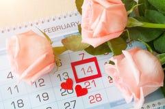 Bakgrund för St-valentindag - rosor av den ljusa persikan färgar över kalendern med det röda inramade datumet för St-valentindage Royaltyfria Foton