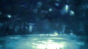 Bakgrund för Starburst utrymmelopp Abstrakt begrepp stock video