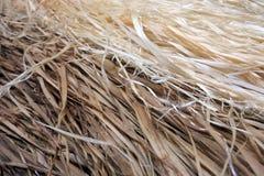 Bakgrund för sugrör för kjol för Stillahavs- öar för bast Arkivbilder