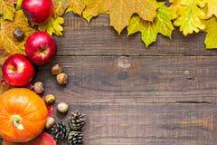 Bakgrund för tacksägelsehöstnedgång med pumpa, sidor, äpplen och muttrar Royaltyfri Foto