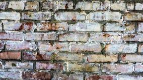 Bakgrund för tegelstenvägg för ditt skrivbord Royaltyfria Foton