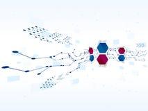 Bakgrund för teknologi för vektordesignnätverk Royaltyfri Bild