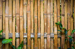 Bakgrund för textur för bambuväggplanka Arkivfoto