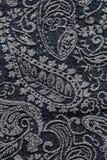 Bakgrund för textur för grov bomullstvillpaisley tyg Royaltyfria Bilder