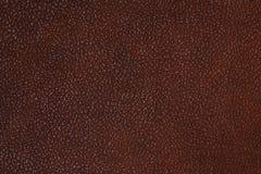 Bakgrund för textur för läder för Drak bruntfärg Arkivfoto