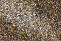 Bakgrund för textur för sandstenkiselstenar för design Royaltyfria Bilder