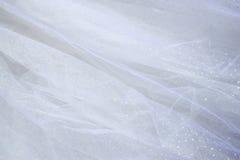 Bakgrund för textur för tappningtyllchiffong gifta sig för trappa för stående för brudbegreppsklänning royaltyfria bilder