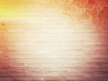 Bakgrund för textur för tegelstenvägg, retro stilar Arkivfoton