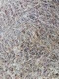 Bakgrund för torkat gräs för guling Arkivfoto