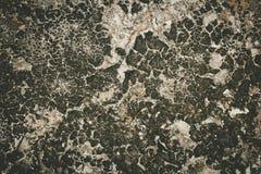 Bakgrund för torr jord för spricka jord Royaltyfri Fotografi