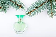 Bakgrund för träd för exponeringsglasdoftgran vit inget fotografering för bildbyråer