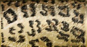 Bakgrund för ull för Gepard gepardhud illustration Arkivfoto