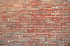 Bakgrund för vägg för röd tegelsten i en fotograffotostudio Arkivfoto