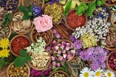 Bakgrund för växt- medicin Arkivbilder