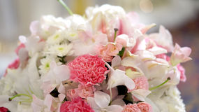Bakgrund för valentin för rosblommabröllop Royaltyfria Foton