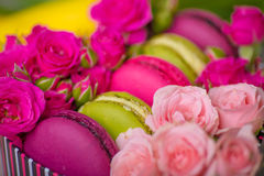 Bakgrund för valentinmorsa dagen easter med förälskelse Royaltyfria Foton