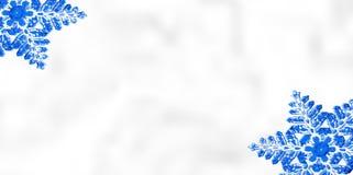Bakgrund för vinterjulsnöflinga Royaltyfri Fotografi