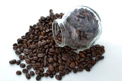 Bakgrund för vit för bönor för svart kaffe Royaltyfri Fotografi