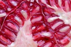 Bakgrund för vitamines för makro för veggie för granatäpplefruktgrönsak arkivbilder