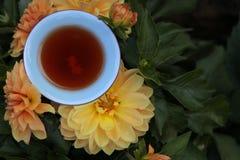 Bakgrund f?r blomma f?r kopp f?r svart te inget royaltyfri foto