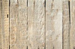 Bakgrund från bruna träbräden med textur Arkivfoto