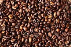 Bakgrund från kaffebönor Royaltyfri Foto