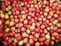 Bakgrund från nya organiska röda och gröna äpplen royaltyfri foto