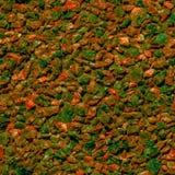 Bakgrund från små stenar Arkivfoto