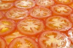 Bakgrund från tomater Royaltyfri Foto