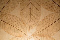 bakgrund från trädbladslut upp Arkivbild