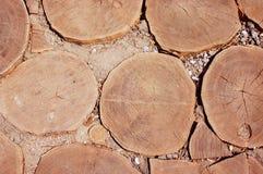 Bakgrund från trummorna av träd Arkivfoto